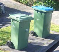 Bins on naturestrip