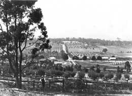 History of Croydon 1902 photograph