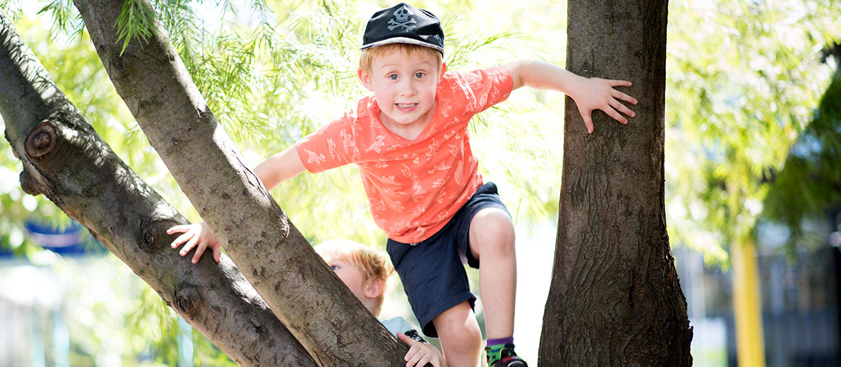 Child climbing in tree